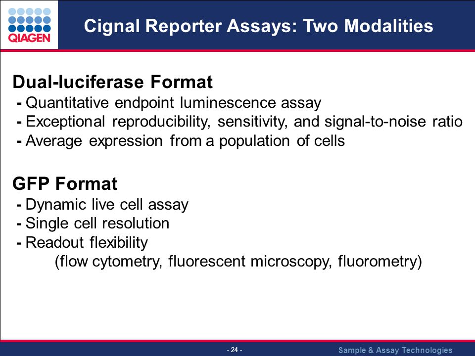 Sample & Assay Technologies - 24 - Cignal Reporter Assays: Two Modalities Dual-luciferase Format - Quantitative endpoint luminescence assay - Exceptional reproducibility, sensitivity, and signal-to-noise ratio - Average expression from a population of cells GFP Format - Dynamic live cell assay - Single cell resolution - Readout flexibility (flow cytometry, fluorescent microscopy, fluorometry)