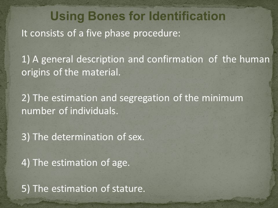 The human skeleton consists of both fused and individual bone.