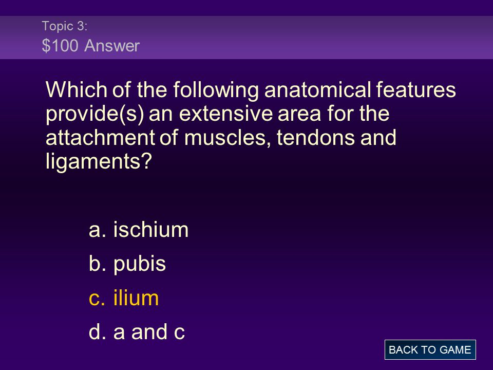 Topic 3: $100 Answer Which of the following anatomical features provide(s) an extensive area for the attachment of muscles, tendons and ligaments.