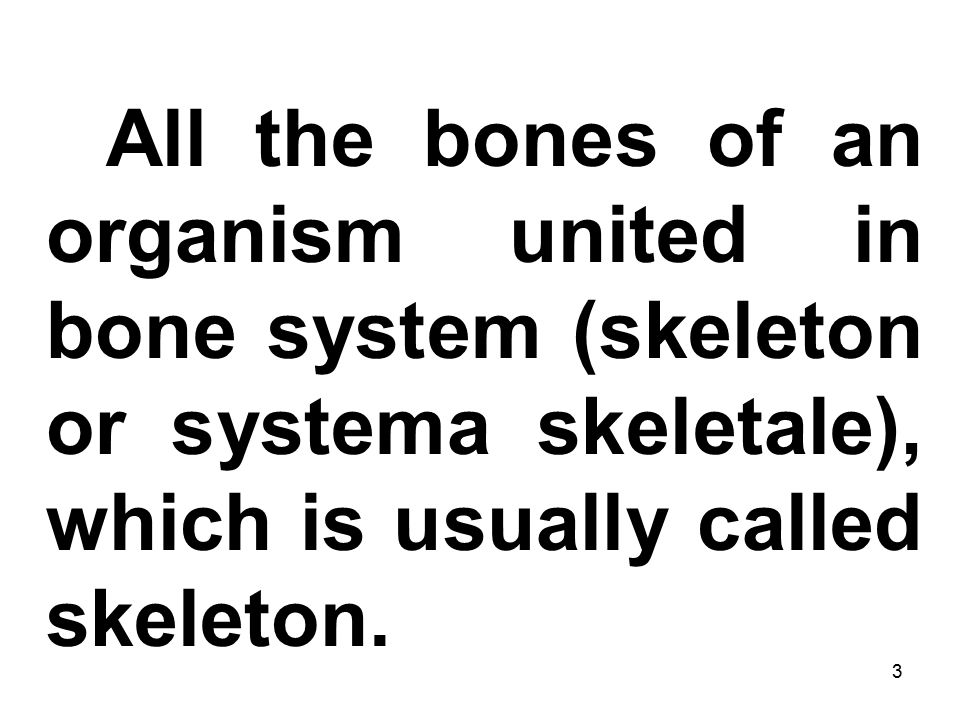 3 All the bones of an organism united in bone system (skeleton or systema skeletale), which is usually called skeleton.