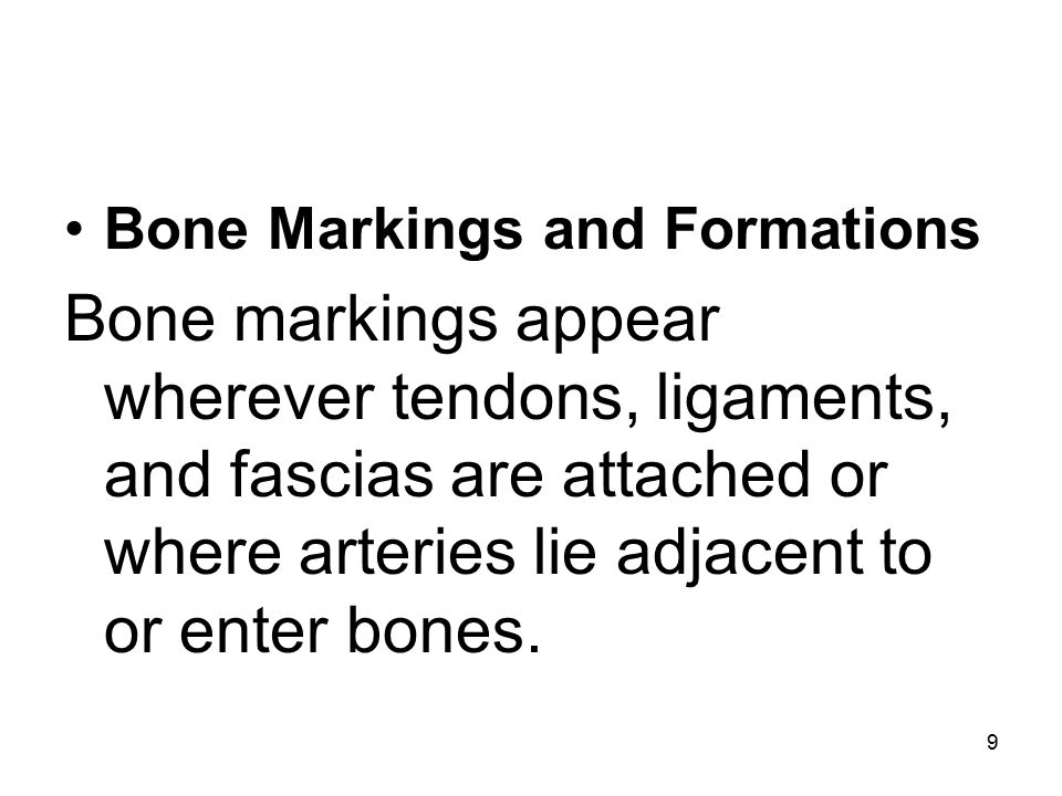 10 The various markings and features of bones are: caput (head): large, round articular end (e.g., the head of the humerus).