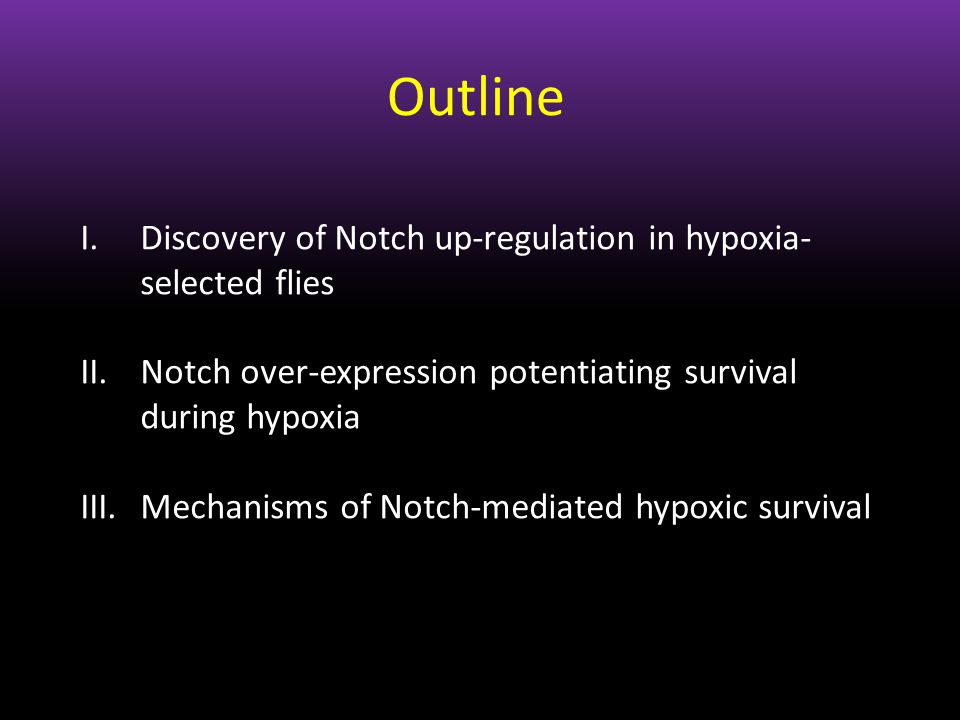 Outline I.Discovery of Notch up-regulation in hypoxia- selected flies II.Notch over-expression potentiating survival during hypoxia III.Mechanisms of