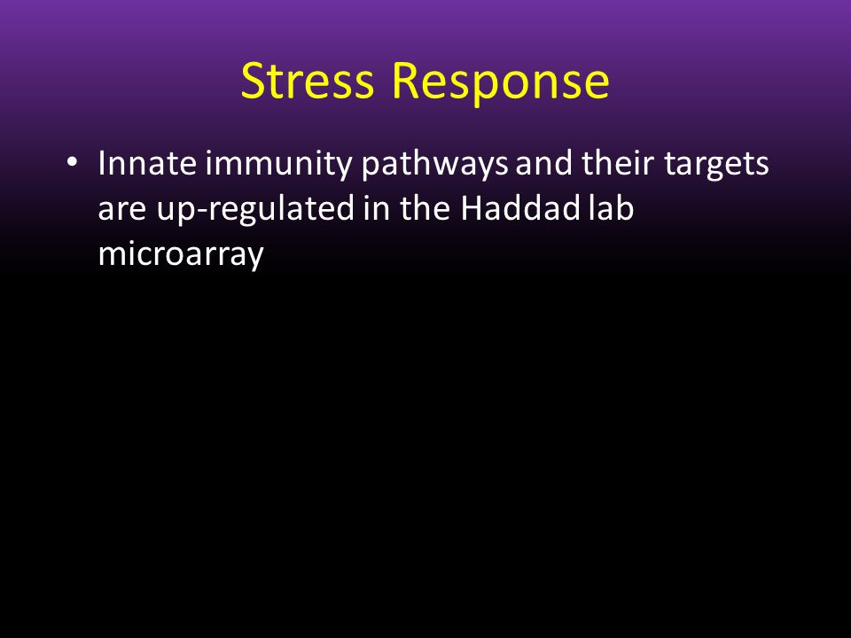 Innate immunity pathways and their targets are up-regulated in the Haddad lab microarray Stress Response