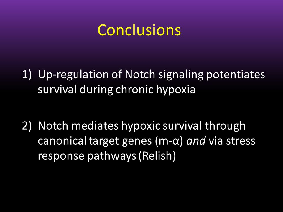 Conclusions 1)Up-regulation of Notch signaling potentiates survival during chronic hypoxia 2)Notch mediates hypoxic survival through canonical target