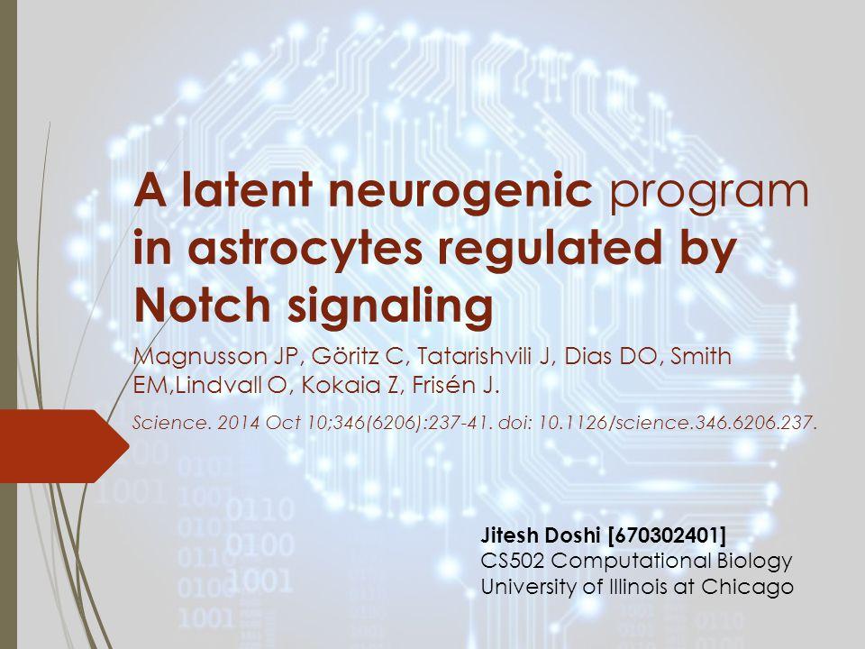 A latent neurogenic program in astrocytes regulated by Notch signaling Magnusson JP, Göritz C, Tatarishvili J, Dias DO, Smith EM,Lindvall O, Kokaia Z, Frisén J.