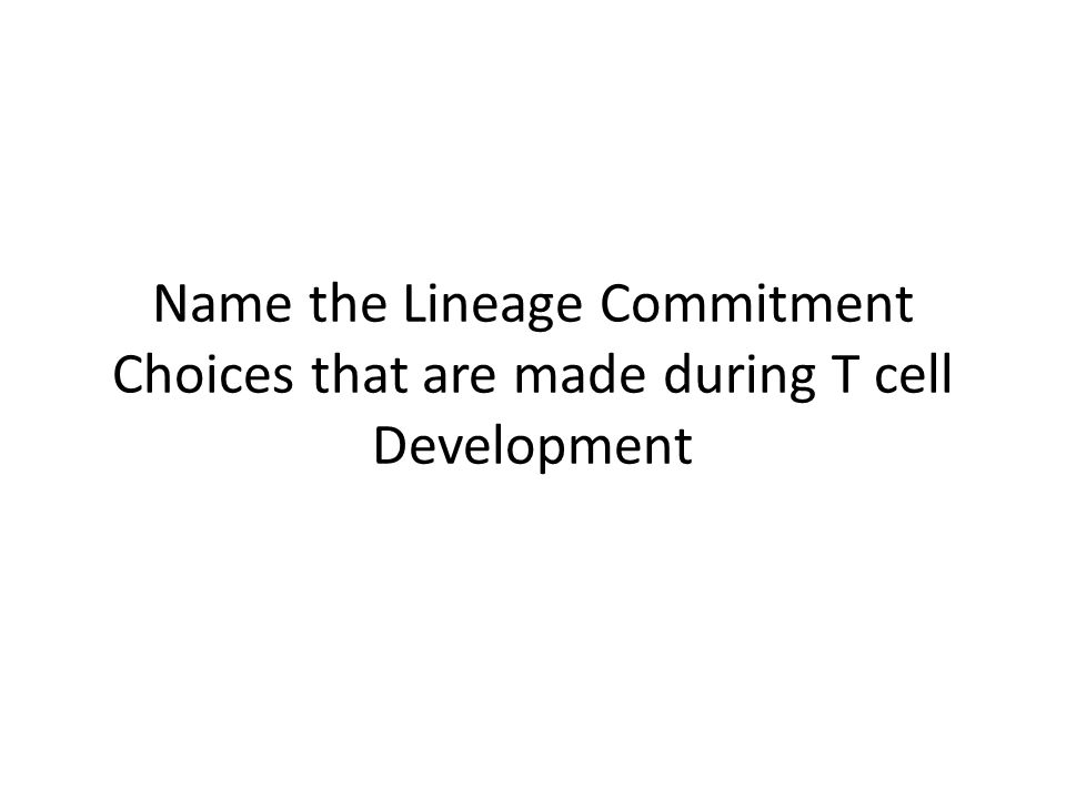 Name the Lineage Commitment Choices that are made during T cell Development