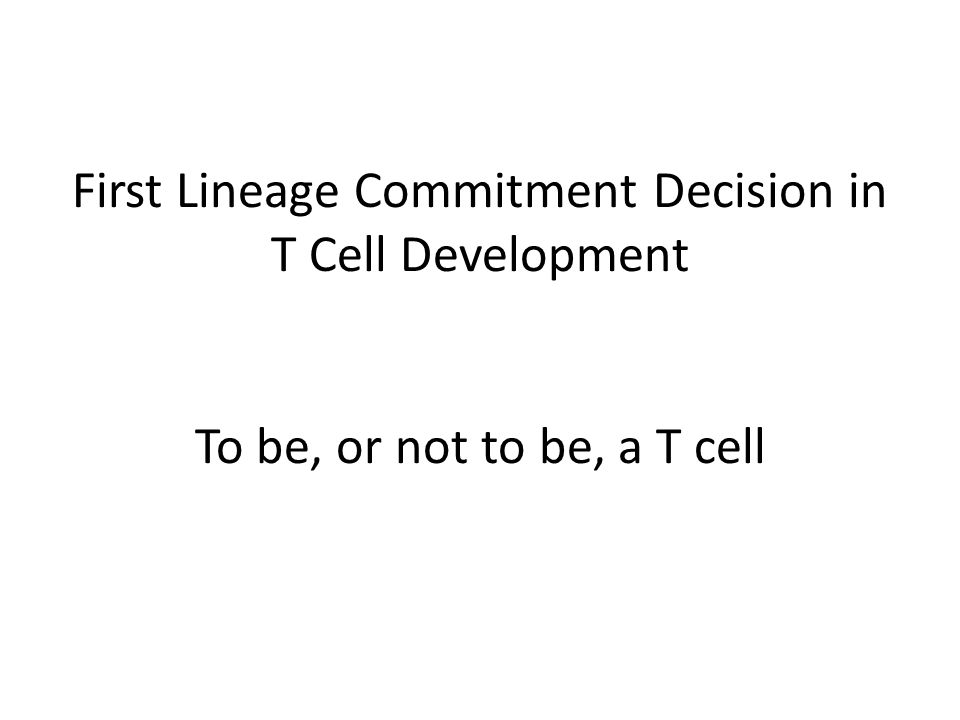 First Lineage Commitment Decision in T Cell Development To be, or not to be, a T cell