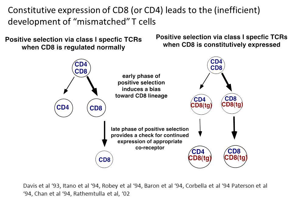 Davis et al '93, Itano et al '94, Robey et al '94, Baron et al '94, Corbella et al '94 Paterson et al '94, Chan et al '94, Rathemtulla et al, '02 Constitutive expression of CD8 (or CD4) leads to the (inefficient) development of mismatched T cells