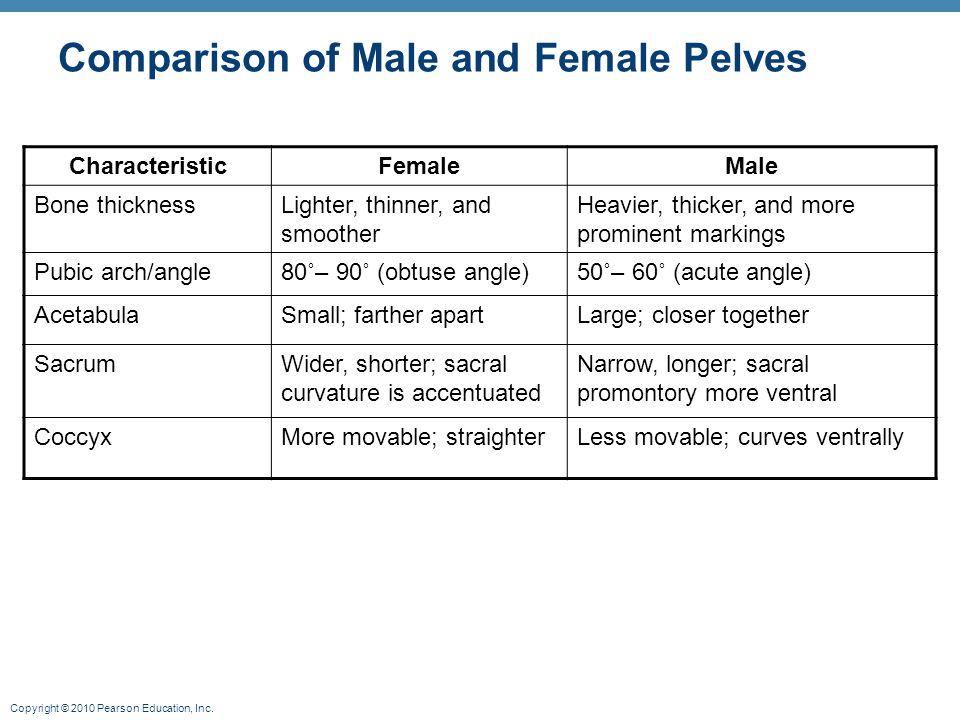 Copyright © 2010 Pearson Education, Inc. Table 7.4