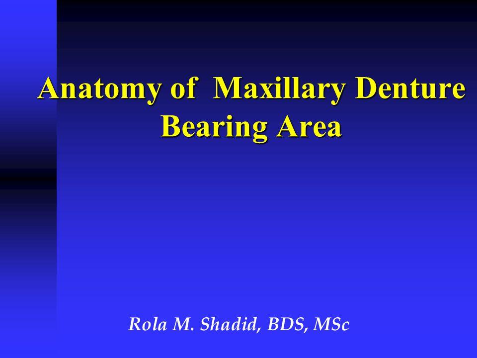 The anatomical Features That Influence Shape of Hard Palate & Residual Ridge  Incisive foramen  Maxillary tuberosity  Sharp, spiny processes  Torus palatinus