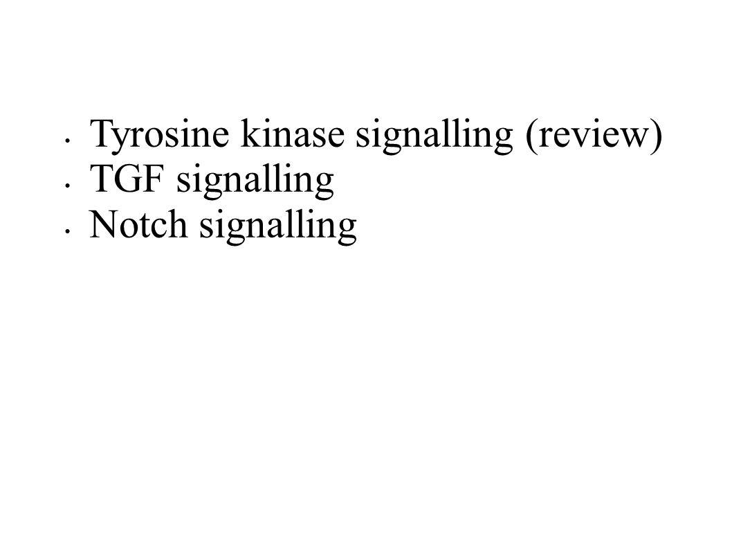 Tyrosine kinase signalling (review) TGF signalling Notch signalling