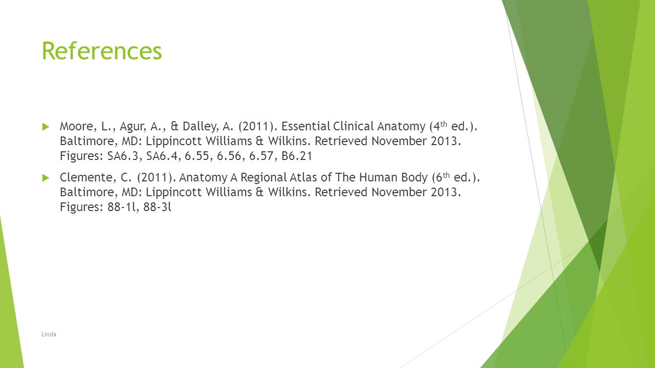 References  Moore, L., Agur, A., & Dalley, A. (2011). Essential Clinical Anatomy (4 th ed.). Baltimore, MD: Lippincott Williams & Wilkins. Retrieved
