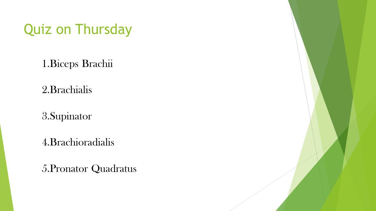 Quiz on Thursday 1.Biceps Brachii 2.Brachialis 3.Supinator 4.Brachioradialis 5.Pronator Quadratus