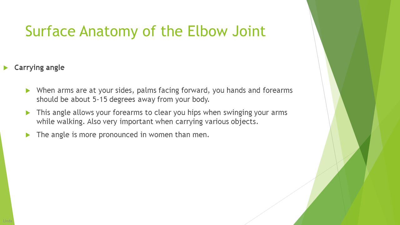 Surface Anatomy of the Elbow Joint  When arms are at your sides, palms facing forward, you hands and forearms should be about 5-15 degrees away from