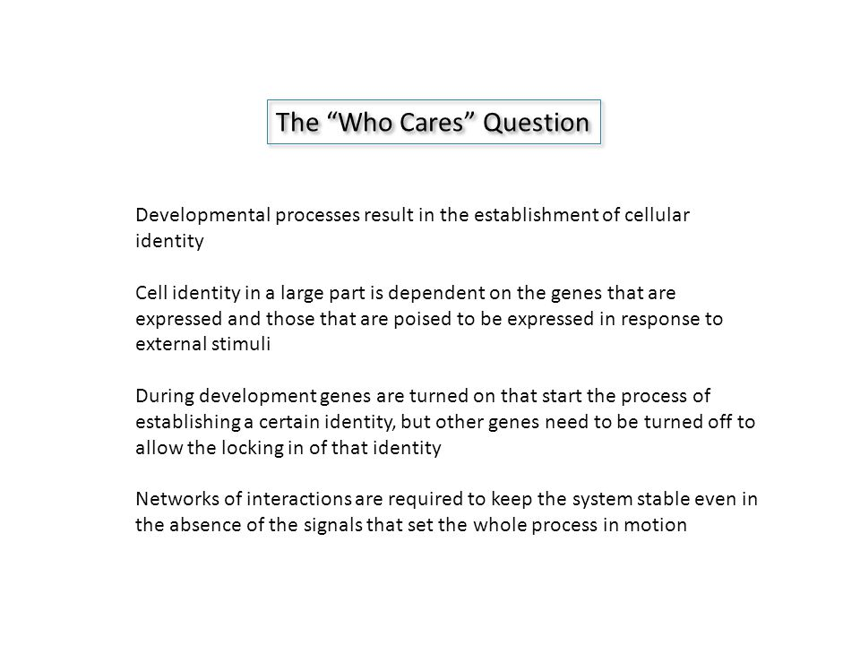 The Who Cares Question Developmental processes result in the establishment of cellular identity Cell identity in a large part is dependent on the genes that are expressed and those that are poised to be expressed in response to external stimuli During development genes are turned on that start the process of establishing a certain identity, but other genes need to be turned off to allow the locking in of that identity Networks of interactions are required to keep the system stable even in the absence of the signals that set the whole process in motion