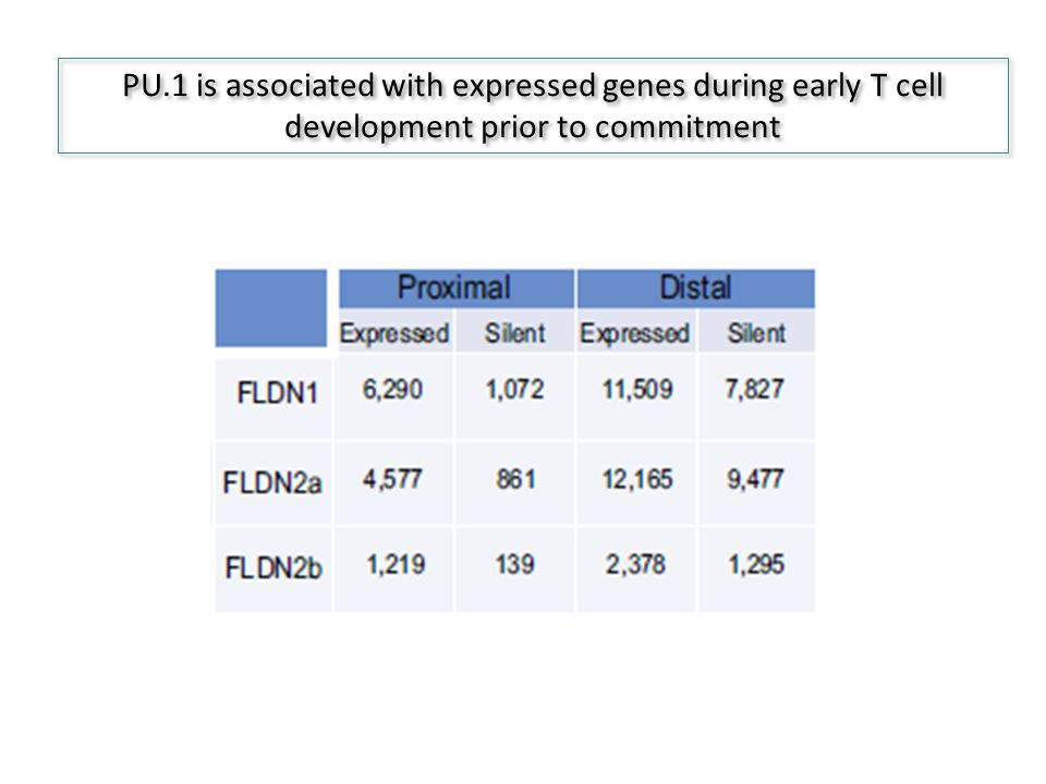 PU.1 is associated with expressed genes during early T cell development prior to commitment