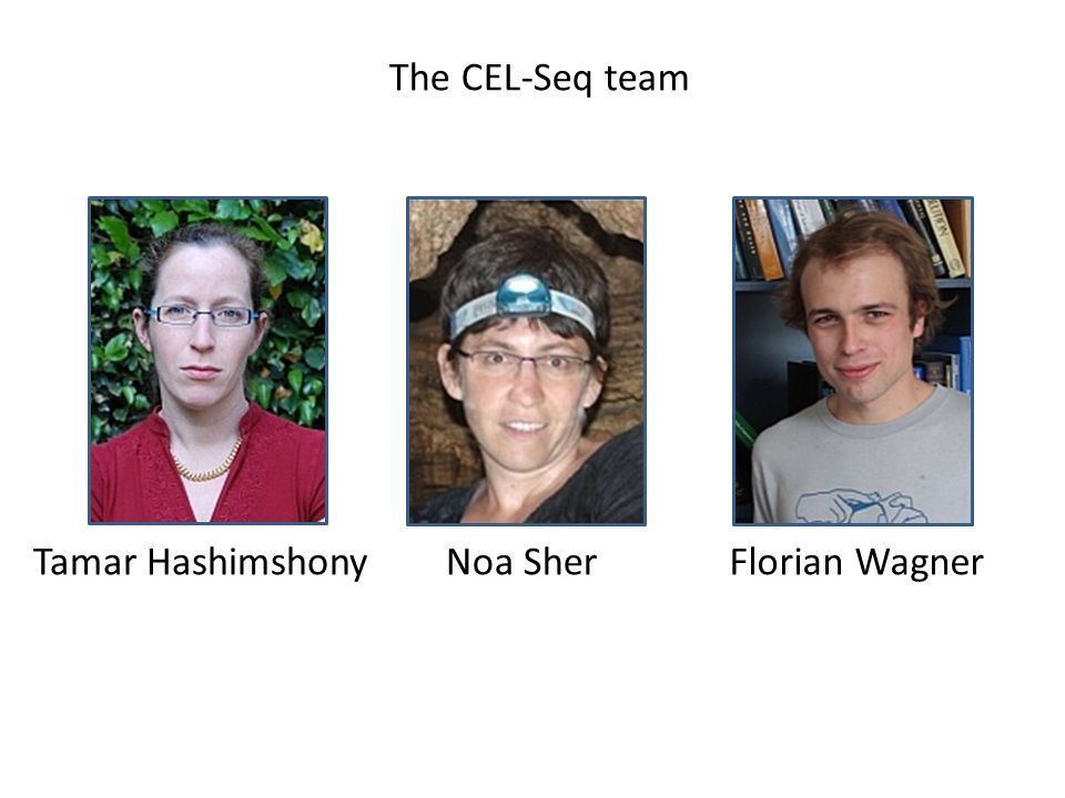 Tamar HashimshonyNoa SherFlorian Wagner The CEL-Seq team