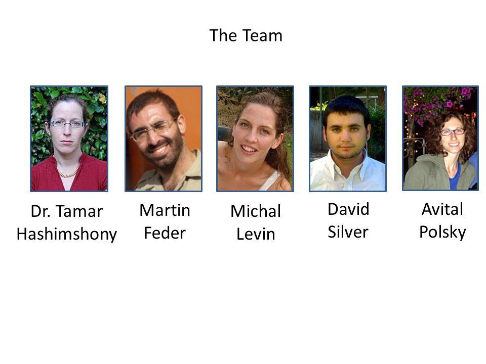 Dr. Tamar Hashimshony Martin Feder David Silver The Team Avital Polsky Michal Levin