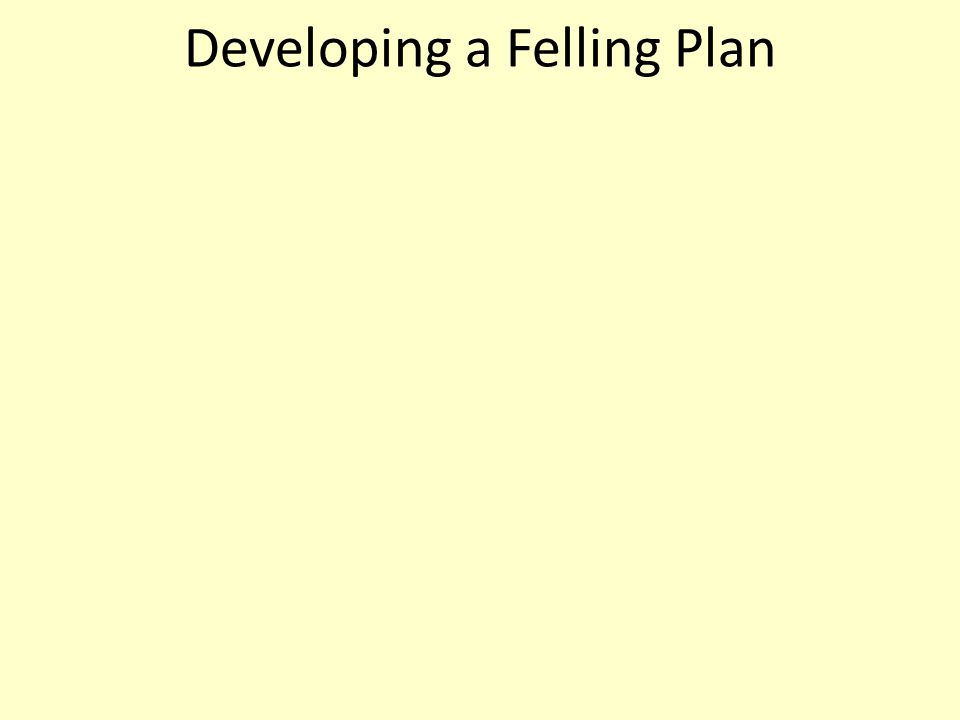 Developing a Felling Plan