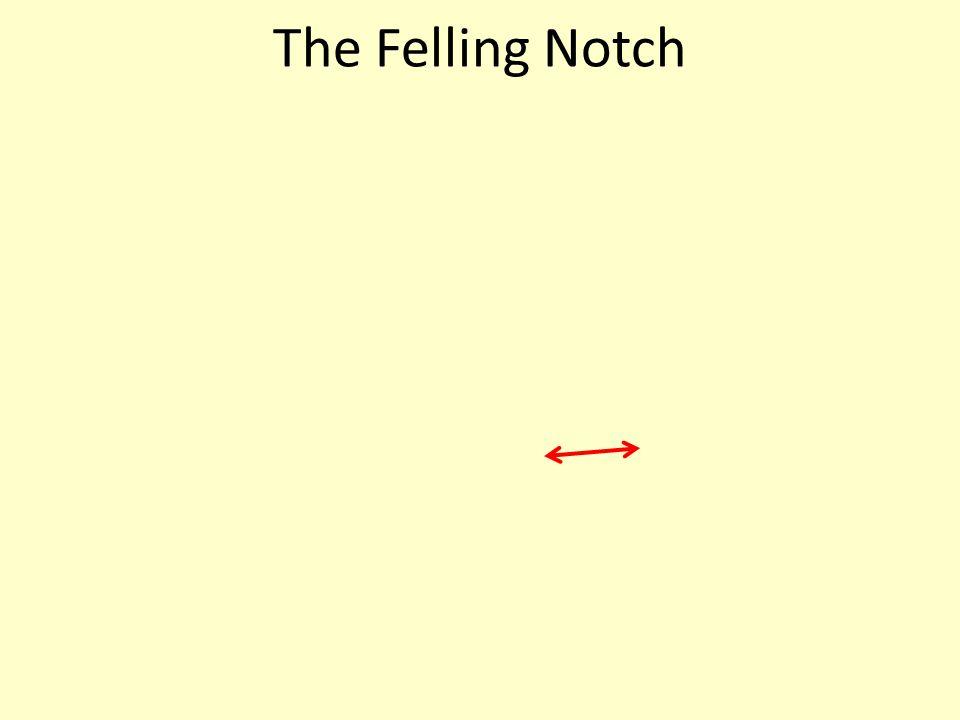 The Felling Notch