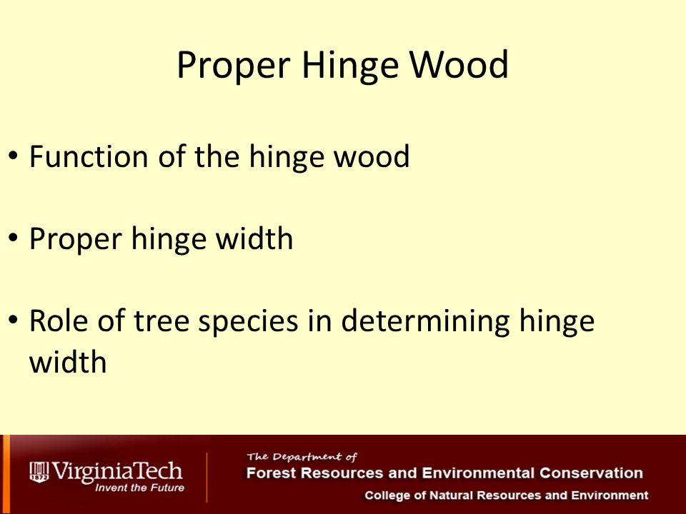 Proper Hinge Wood Function of the hinge wood Proper hinge width Role of tree species in determining hinge width