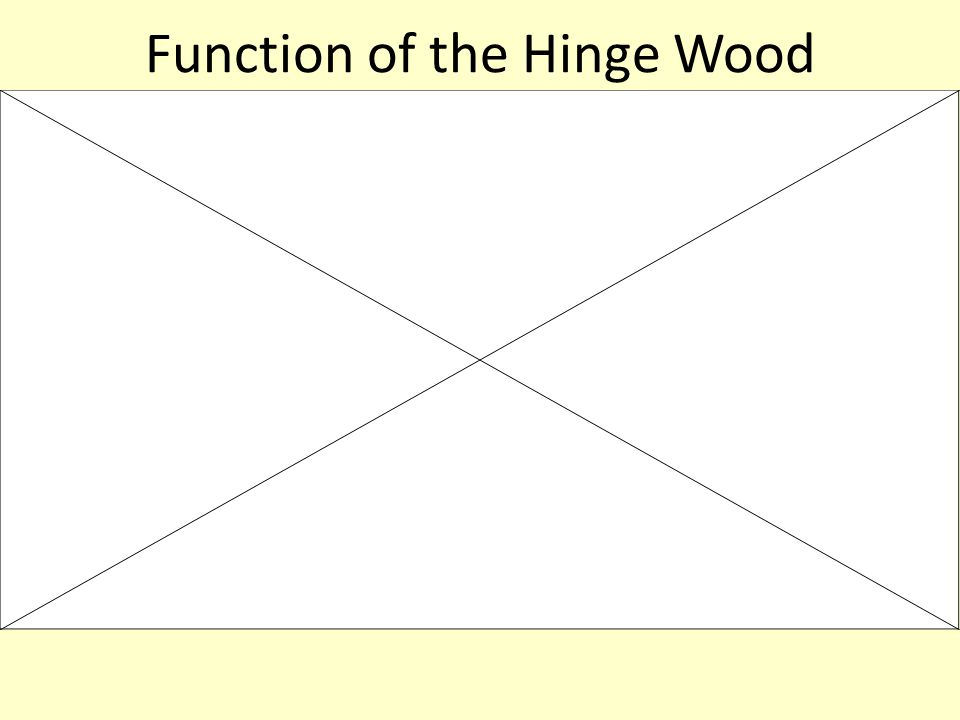 Function of the Hinge Wood