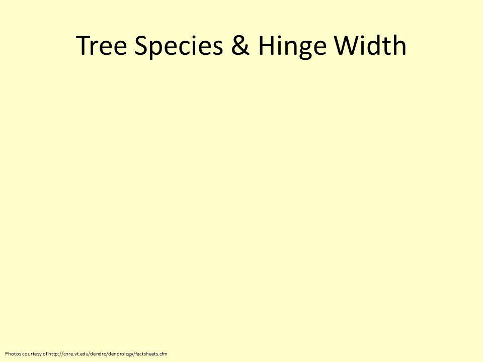 Tree Species & Hinge Width Photos courtesy of http://cnre.vt.edu/dendro/dendrology/factsheets.cfm