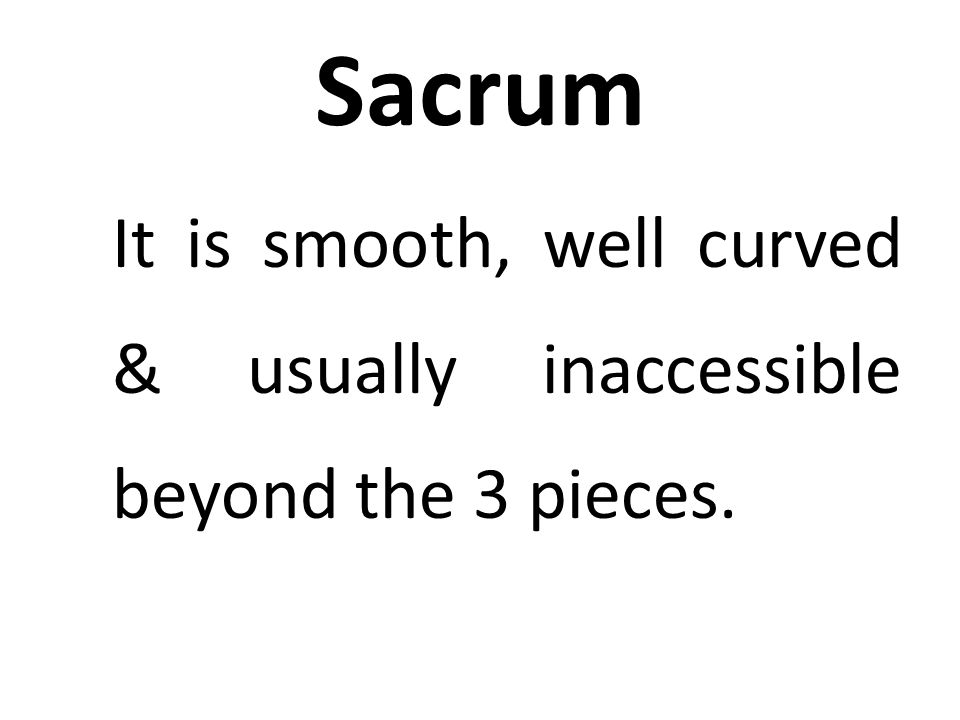 Sacrum It is smooth, well curved & usually inaccessible beyond the 3 pieces.