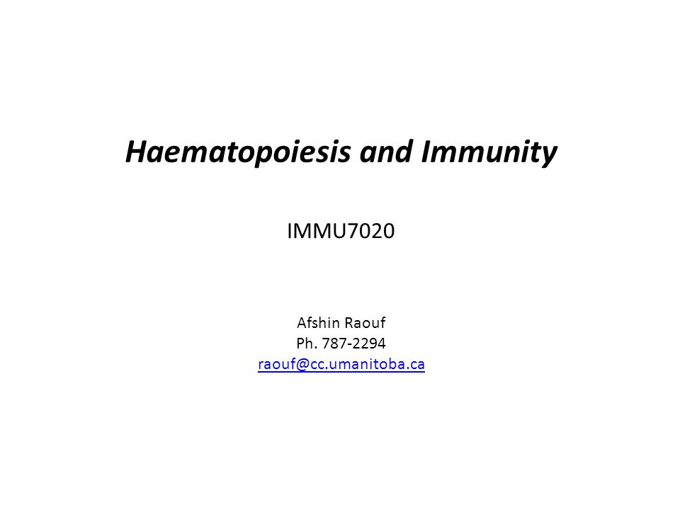 IMMU7020 Haematopoiesis and Immunity Afshin Raouf Ph. 787-2294 raouf@cc.umanitoba.ca