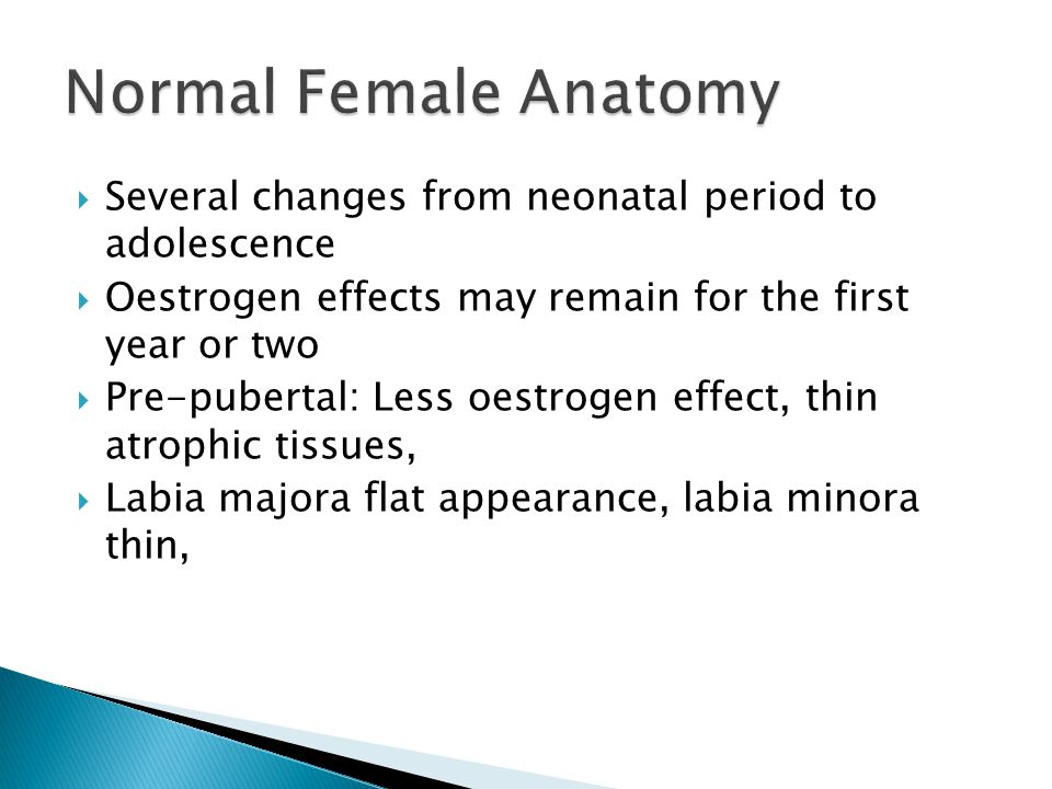  Several changes from neonatal period to adolescence  Oestrogen effects may remain for the first year or two  Pre-pubertal: Less oestrogen effect, thin atrophic tissues,  Labia majora flat appearance, labia minora thin,