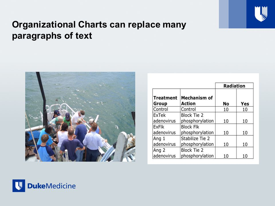 Organizational Charts can replace many paragraphs of text
