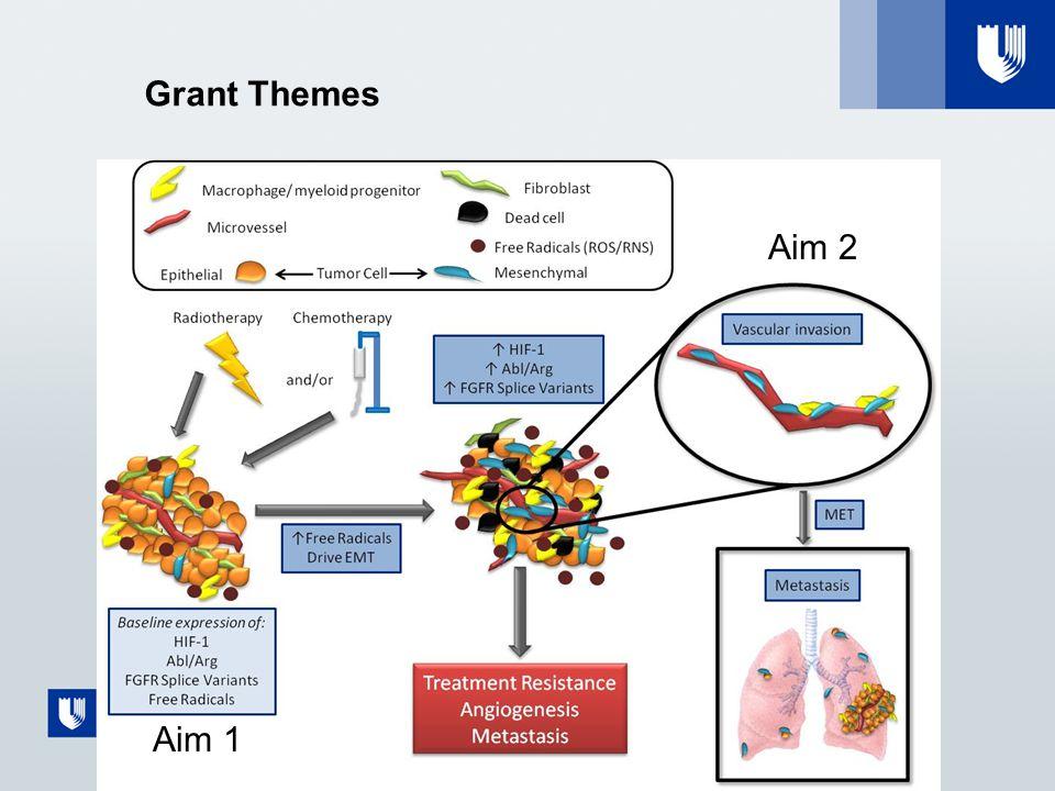 Grant Themes Aim 1 Aim 2