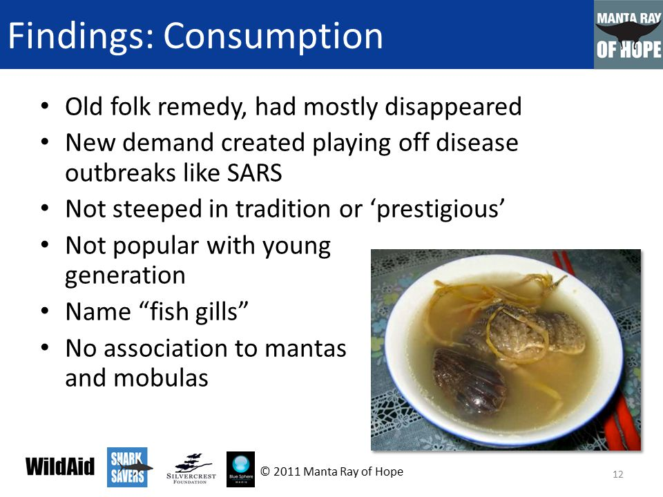 Findings: Consumption Old folk remedy, had mostly disappeared New demand created playing off disease outbreaks like SARS Not steeped in tradition or 'prestigious' Not popular with young generation Name fish gills No association to mantas and mobulas 12 © 2011 Manta Ray of Hope