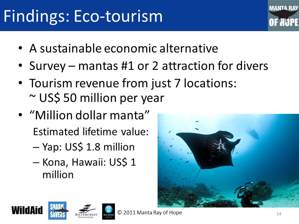 Findings: Eco-tourism A sustainable economic alternative Survey – mantas #1 or 2 attraction for divers Tourism revenue from just 7 locations: ~ US$ 50 million per year Million dollar manta Estimated lifetime value: – Yap: US$ 1.8 million – Kona, Hawaii: US$ 1 million 14 © 2011 Manta Ray of Hope