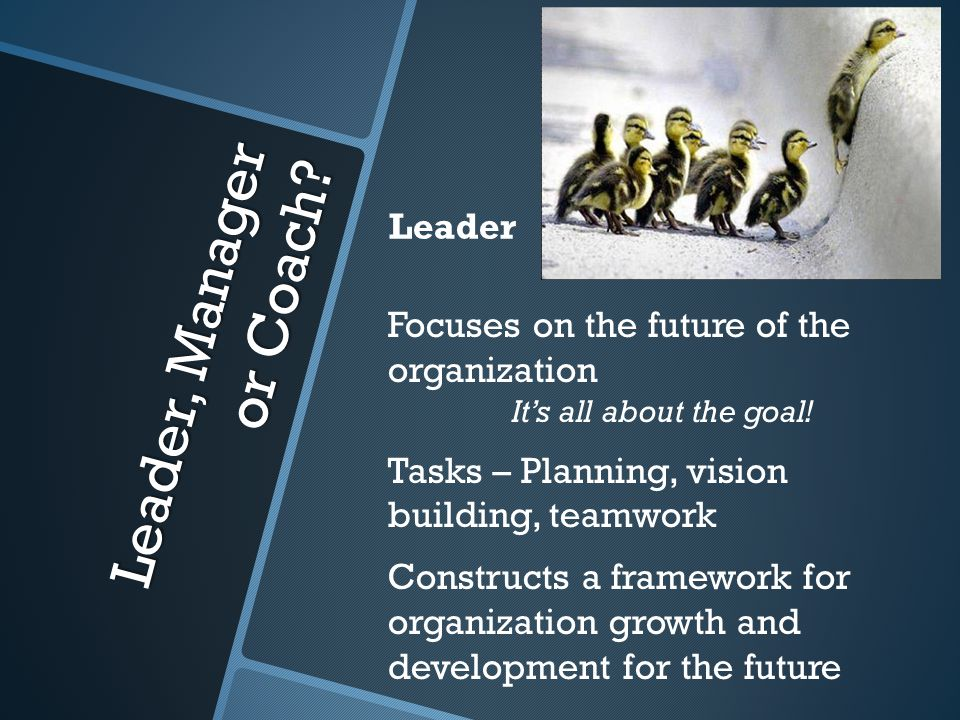 Focuses on the future of the organization It's all about the goal.