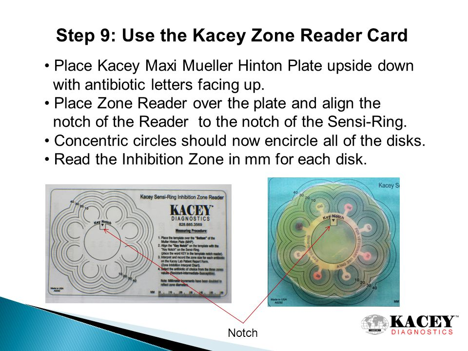 Step 9: Use the Kacey Zone Reader Card Place Kacey Maxi Mueller Hinton Plate upside down with antibiotic letters facing up.