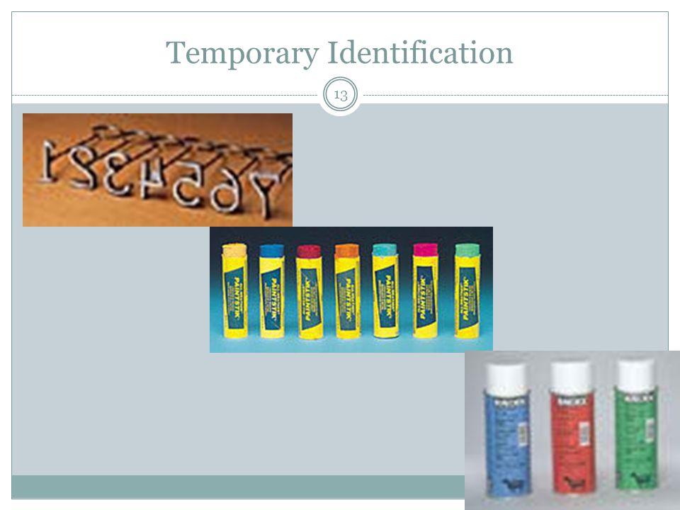 Temporary Identification 13