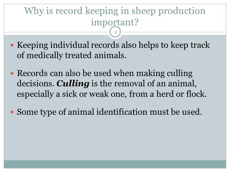 Why is record keeping in sheep production important.