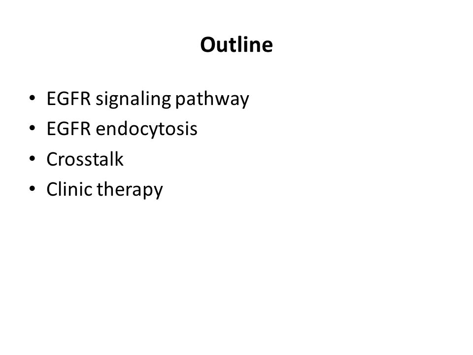 Outline EGFR signaling pathway EGFR endocytosis Crosstalk Clinic therapy