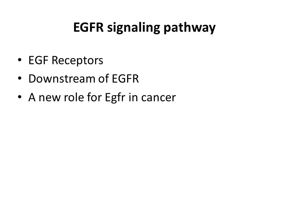 Downstream of EGFR Bogdan et al. 2000