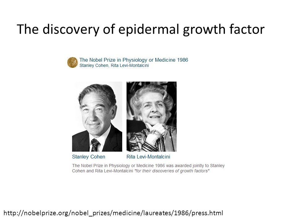 The discovery of epidermal growth factor