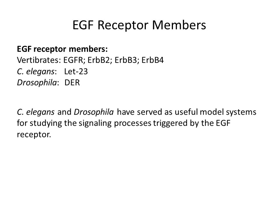 EGFR inhibitor New possible therapies