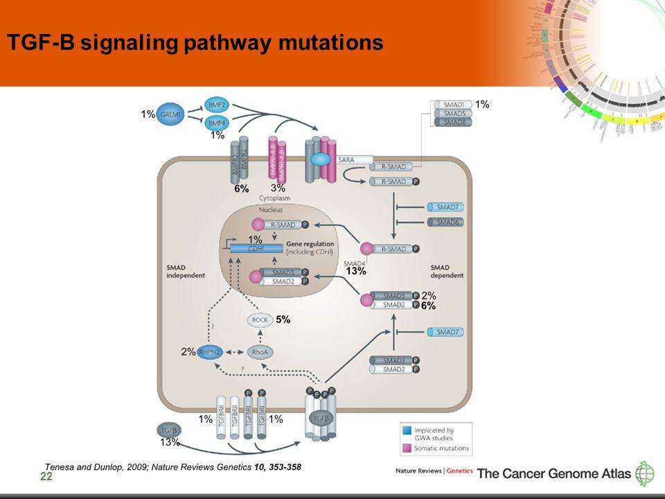 22 TGF-B signaling pathway mutations