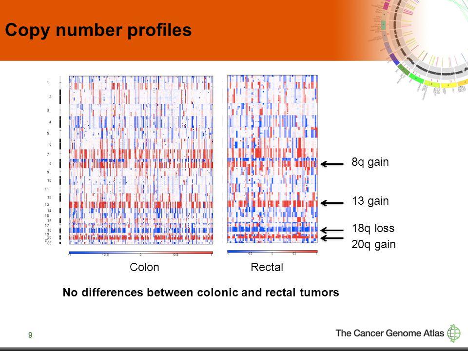 20 ErbB family of genes including amplications of ErbB2