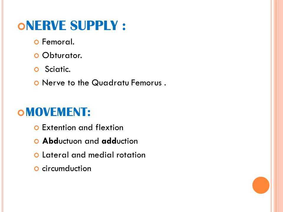 NERVE SUPPLY : Femoral. Obturator. Sciatic. Nerve to the Quadratu Femorus. MOVEMENT: Extention and flextion Abductuon and adduction Lateral and medial
