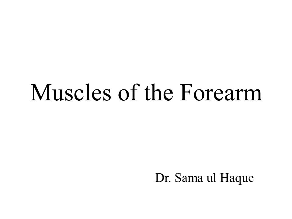 Objectives Identify the muscles in the anterior and posterior compartments of the forearm in terms of their origin, insertion, nerve supply and actions.