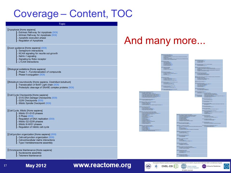 www.reactome.org May 2012 17 Coverage – Content, TOC And many more...