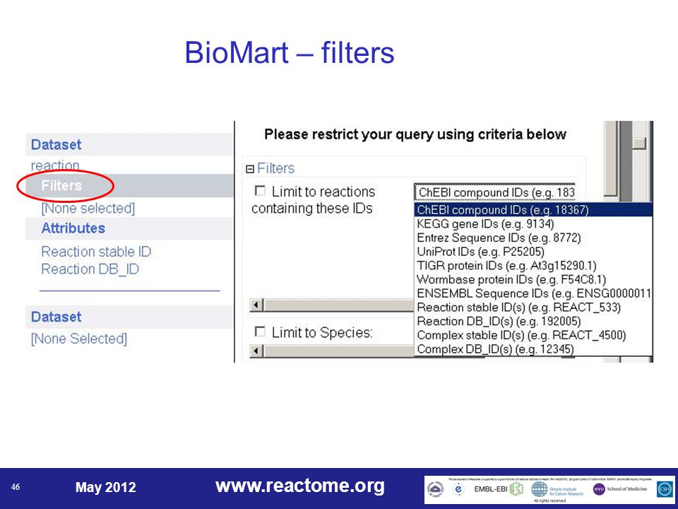 www.reactome.org May 2012 46 BioMart – filters