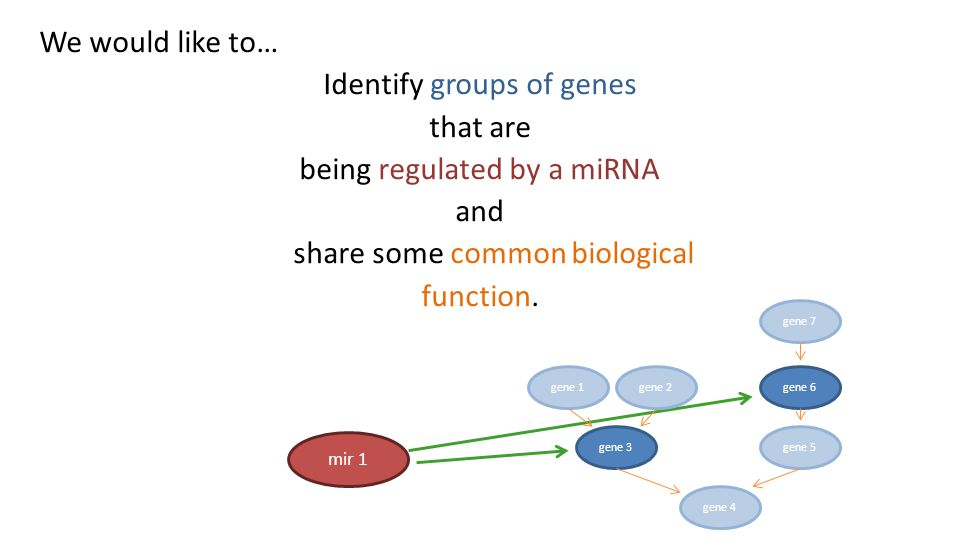 We would like to… Identify groups of genes that are being regulated by a miRNA and share some common biological function.