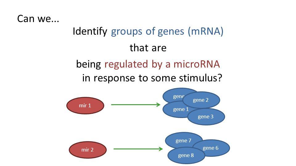 (A) Evaluation via literature search For each miRNA (eg.